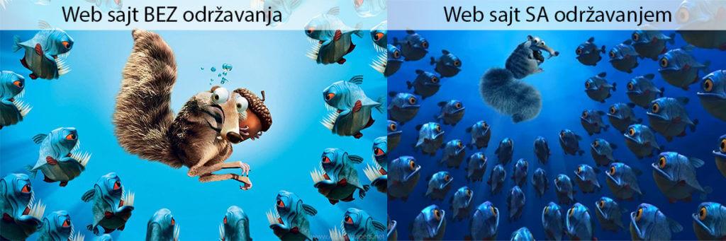 Održavanje-web-sajta-pre-i-posle