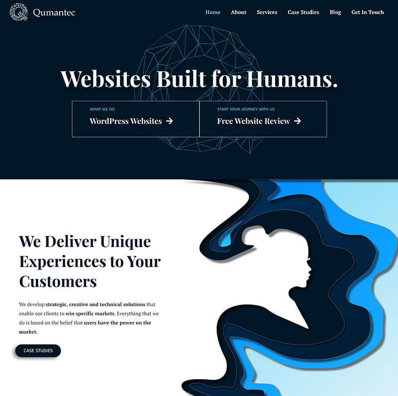 web-dizajn-trick-web studio